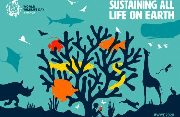 World Wildlife Day Planet of Students